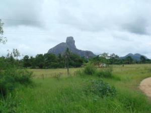 Parque Nacional Monte Pascoal BA (Foto fonte: http://www.thousandwonders.net/)