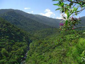 Parque Nacional do Itatiaia RJ (Foto: http://www.icmbio.gov.br/parnaitatiaia/guia-do-visitante.html