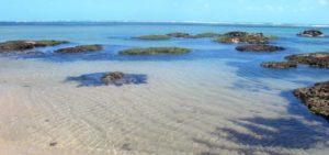 Praia de Fleicheiras CE (Foto: //orixashotel.com.br/)