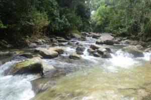 Cachoeiras de Paraty (foto http://www.paraty.com.br/cachoeira_taquari.asp)