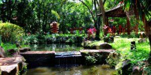Jardim Japonês (foto http://emribeirao.com)