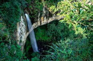 Cacata dos Marins (foto http://renatogrimm.com)